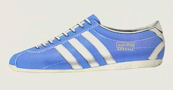 adidas Walking Shoe